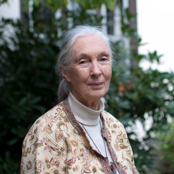 Jane Goodall. Think Out Loud / Flickr