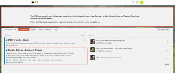Screenshot of the landing page for the Ringers' Forum