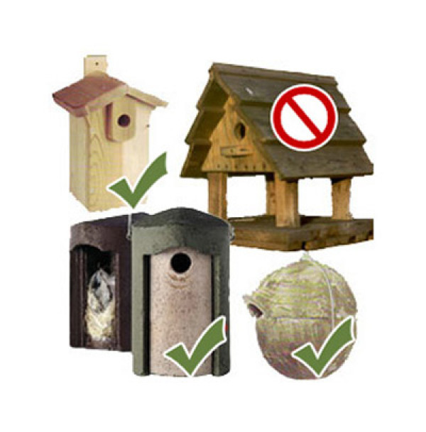 Choosing nestboxes