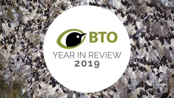 BTO Highlights 2019