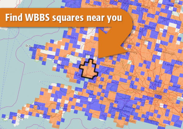 wbbs square signup map