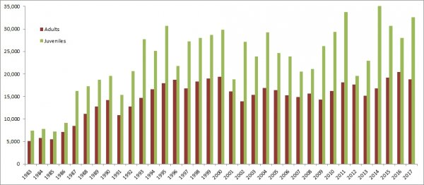 Graph showing the number of birds ringed through CES per year