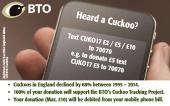 Heard a Cuckoo?