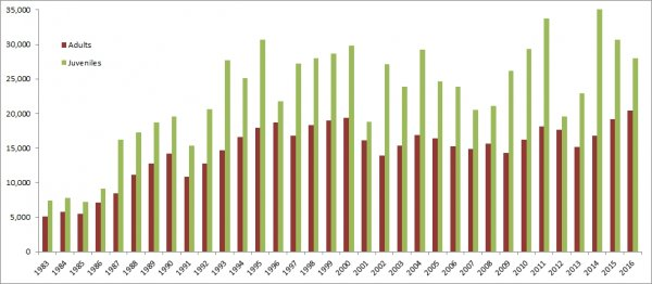 Graph showing the number of birds ringed through CES since 1983
