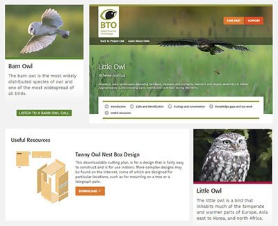 Learn About Owls resource pages