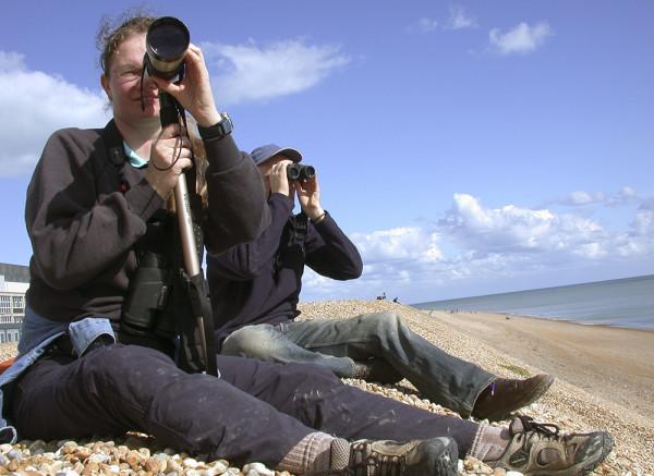 Seawatching. Photograph by Dawn Balmer