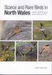 Scarce and Rare Birds in North Wales