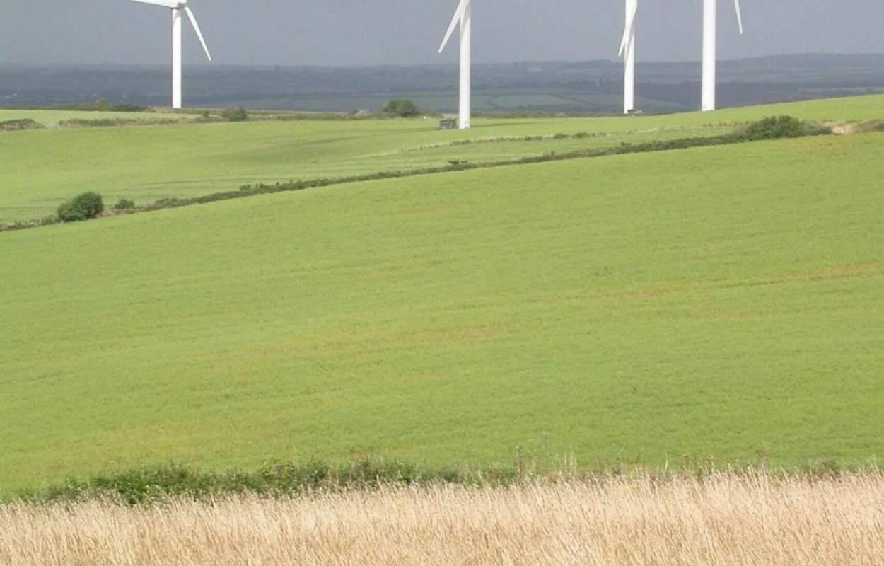 Wind Farm - Dawn Balmer