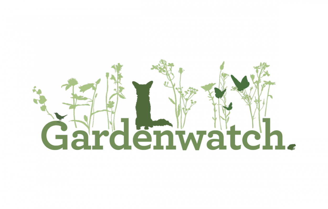 Gardenwatch logo