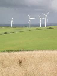 Wind Farm - Dawn Balmer