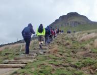 Walk for wildlife walkers