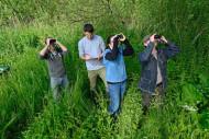 Monitoring breeding birds. David Tipling