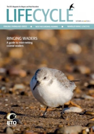 Life Cycle Issue 2 cover