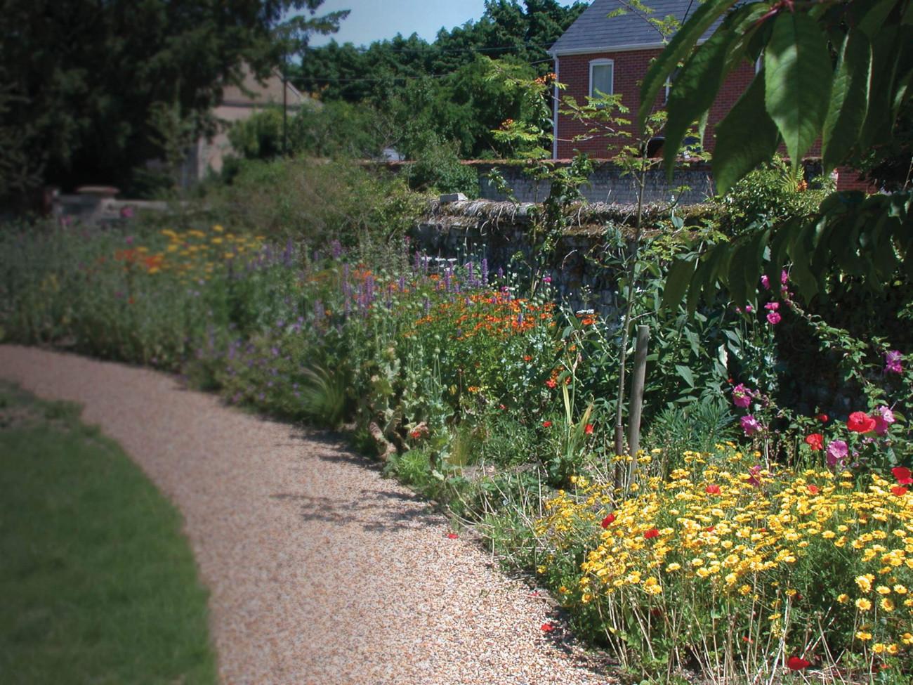 Garden border. Mike Toms