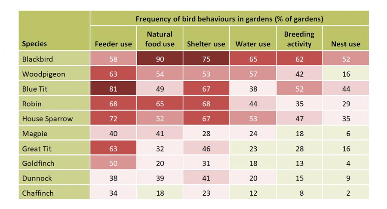 Gardenwatch - bird behaviour chart