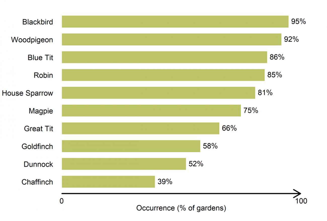 Gardenwatch - bird group distribution