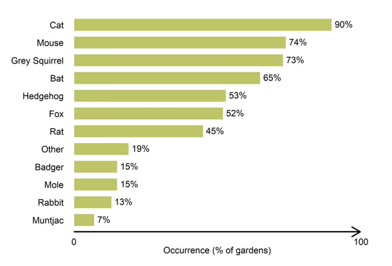 Gardenwatch -  mammal group distribution