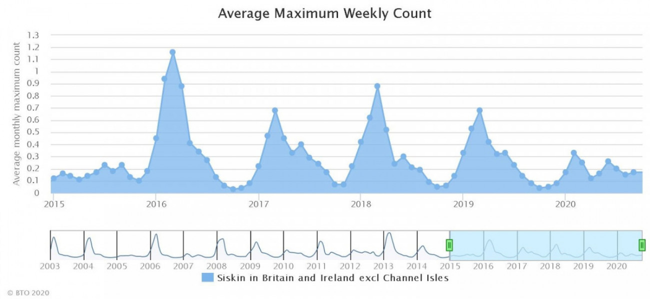 Siskin GBW average maximum weekly count graph