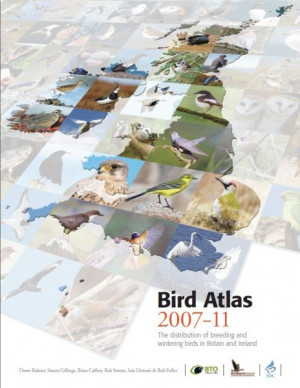 Browse BTO books and guides