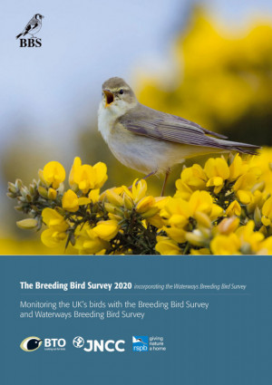 BBS report 2020 cover