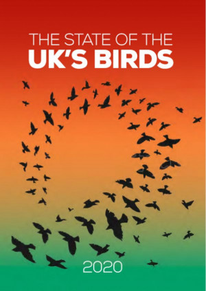 The State of the UK's Birds 2020 cover