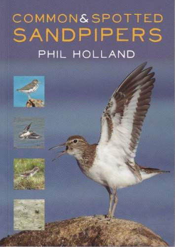 Common and Spotted Sandpipers cover