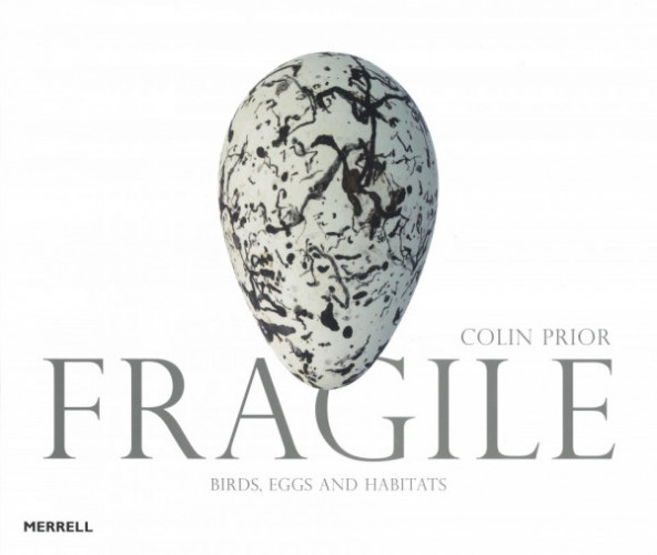 Fragile: Birds Eggs and Habitats (cover)