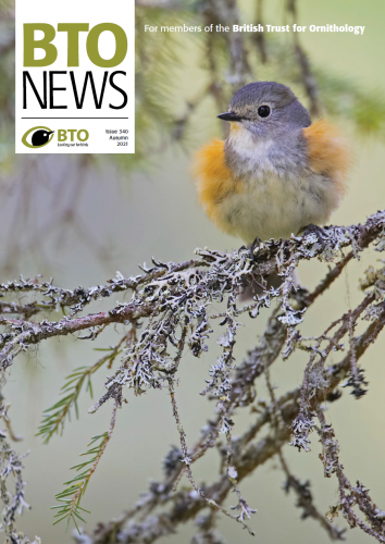BTO News current issue cover