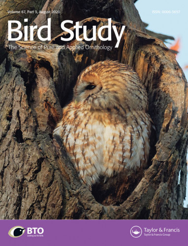 Bird Study current cover