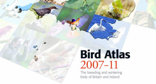 Bird Atlas 2007-11 cover
