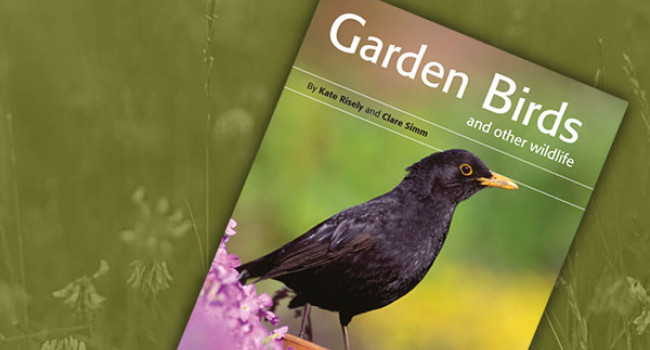Garden Birds and Other Wildlife book cover
