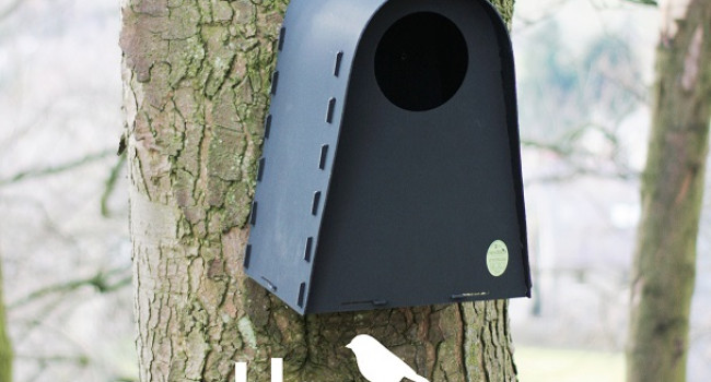 Nestbox Co Tawny Owl Box