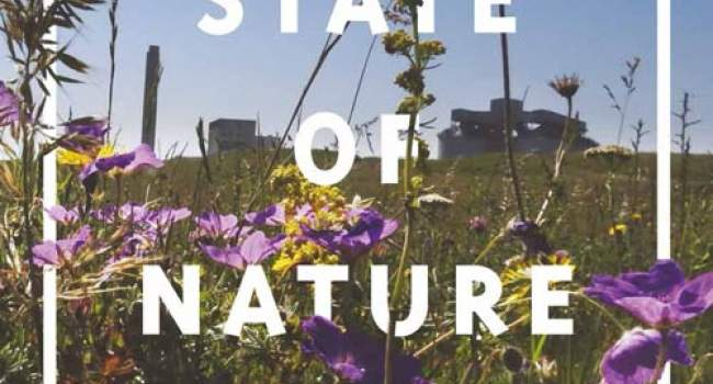 State of Nature 2019 Report UK cover