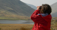 Volunteer looking through binoculars