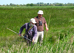 BTO nest recorders looking for nests. Photograph by Dave Leech