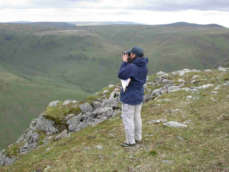 Fieldworker surveying (Peter M Wilson)