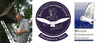 Barn Owl Conservation Network