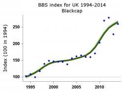 BBS trends