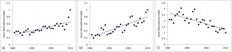 Graphs showing adult abundance for Blackcap, Chiffchaff and Sedge Warbler.
