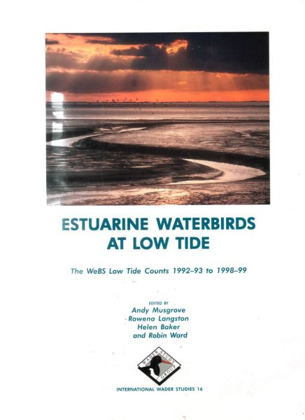 Estuarine Waterbirds at Low Tide