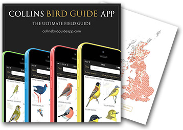 Order Collins Birdguide App with Atlas Maps in-app and help the BTO