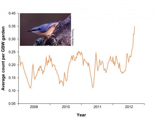 Nuthatch GBW graph
