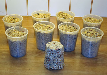 Bird food batch (Elizabeth Bigg)