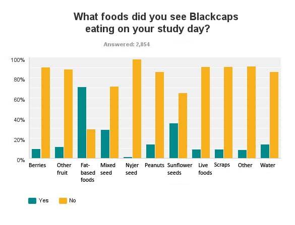 Blackcap food preference graph