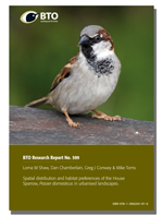 BTO Research Report 599