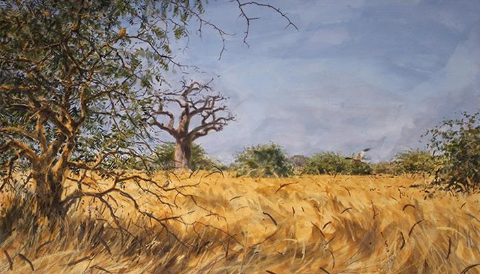 Savanna Woodland. Bruce Pearson