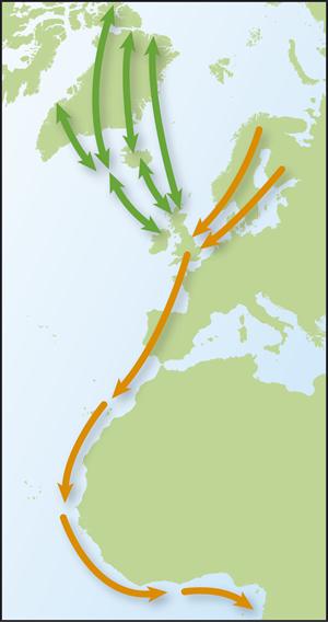 Turnstone map