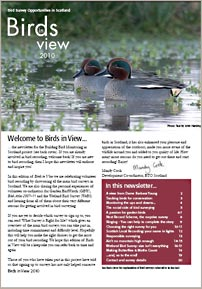 Birds in View newsletter cover