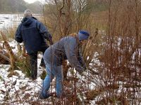 Volunteers clearing scrub at Lound Lakes, Essex & Suffolk Water