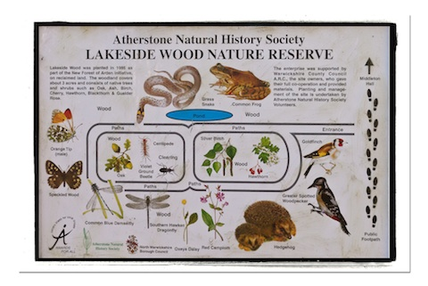 ANHS Lakeside Wood Reserve
